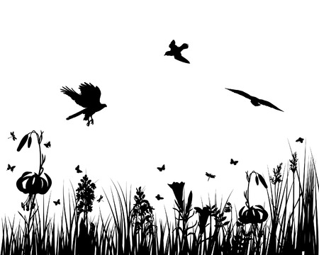 bird pattern: Vector grass silhouettes backgrounds for design use