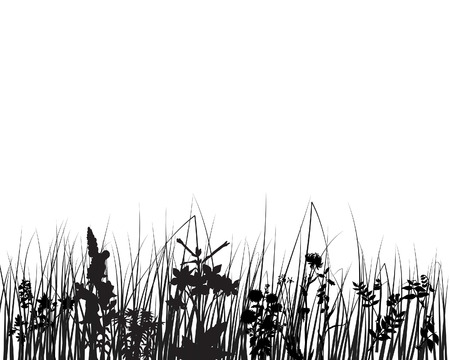 Vector grass silhouettes backgrounds for design use Stock Vector - 4679550