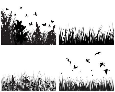 Set of vector grass silhouettes backgrounds for design use Stock Vector - 4774685