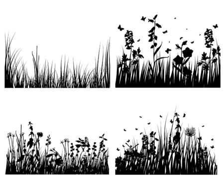 Set of vector grass silhouettes backgrounds for design use Stock Vector - 4774678