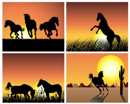 Horse silhouette su sfondo del tramonto. Vector illustration.