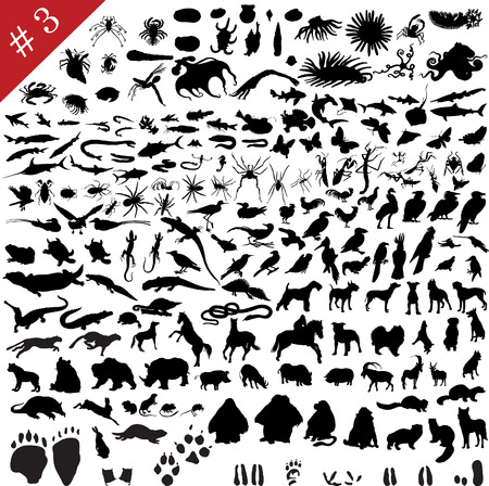 # 3 set of  different animals, birds, insects and fishes  vector silhouettes  Vector