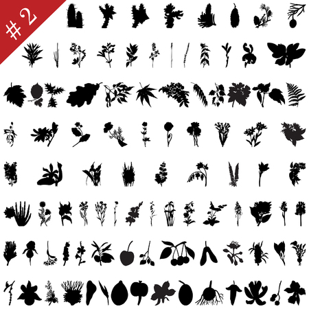 Vector collection of different plants and flowers silhouettes #2 Vector
