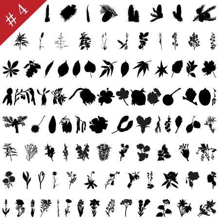 Vector collection of different plants and flowers silhouettes #4 Vector