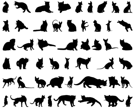 cat sleeping: Set of different vector cats silhouettes for design use