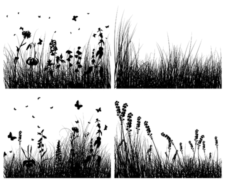 Vector grass silhouettes backgrounds set for design use Vector