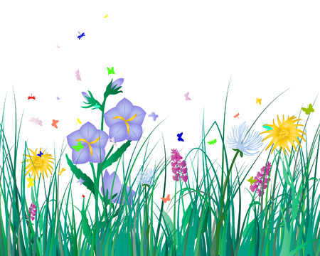 Vector illustration grass background for design use Vector