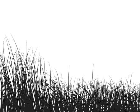 landscaped: Vector illustration grass background for design use Illustration