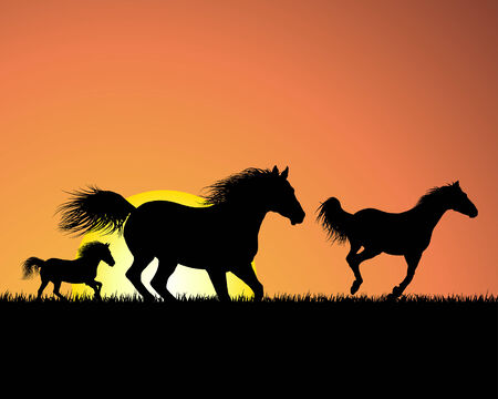 galloping: Horse silhouette on sunset background. Vector illustration.