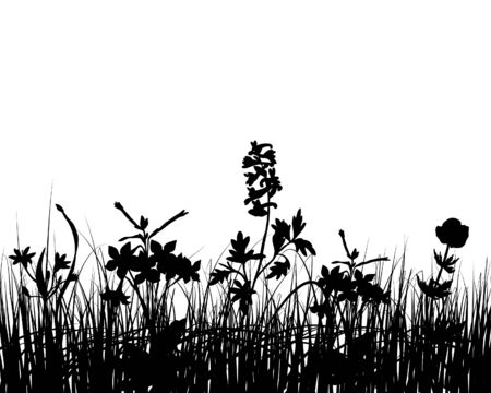 Vector grass silhouettes background for design use Stock Vector - 5124166