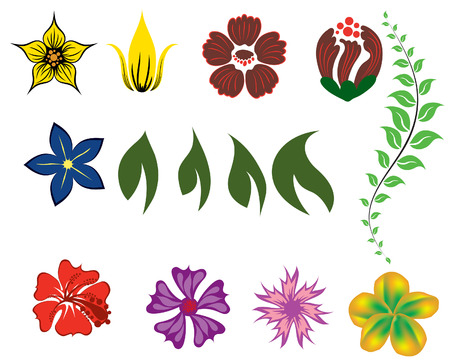 Set of different flower and leaves for self-supporting making floral ornate. Vector