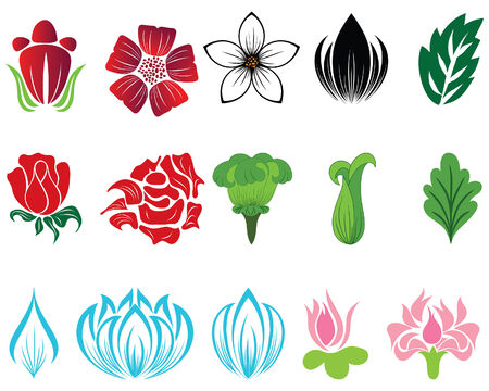 Set of different flower and leaves for self-supporting making floral ornate. Stock Vector - 5168828