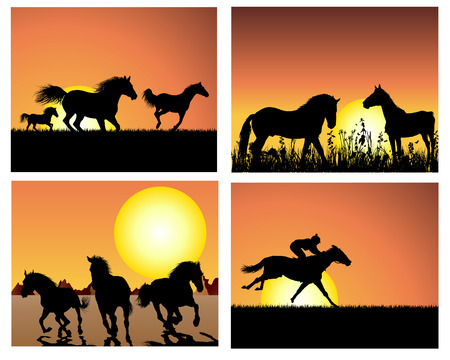 horses in field: Set of horse silhouette on sunset background. Vector illustration.