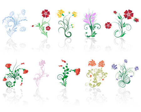 vector elements: Set of different flower and leaves for self-supporting making floral ornate. Illustration