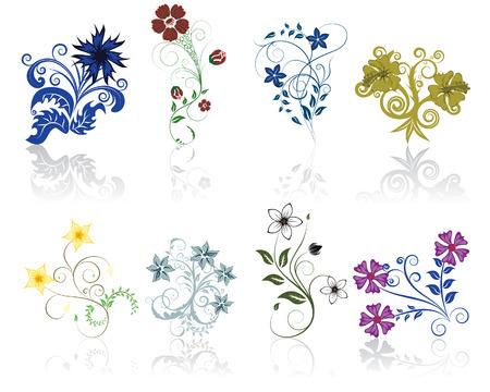 Conjunto de diferentes flores y las hojas de auto-apoyo a la ornamentación floral.