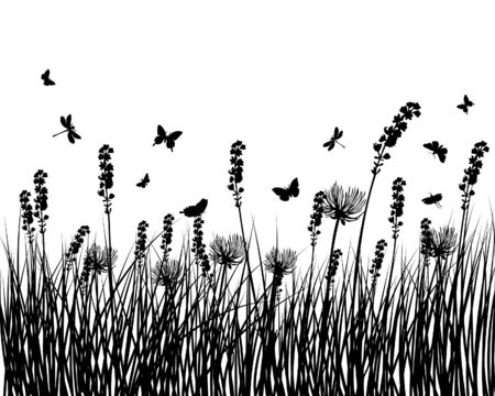 Vector grass silhouettes background for design use Vector