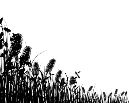 Vector grass silhouettes background for design use Stock Vector - 5233283