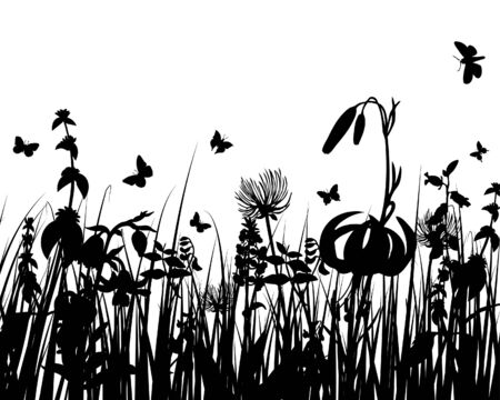 Vector grass silhouettes background for design use Stock Vector - 5233272
