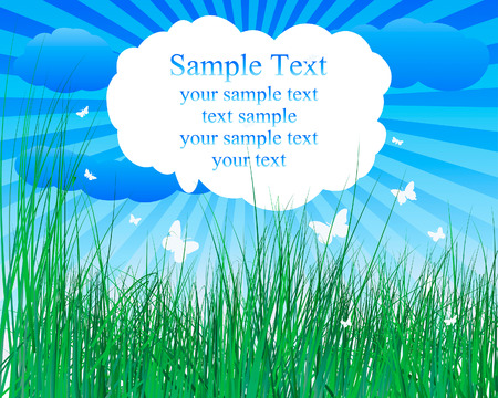 uncultivated: Vector illustration grass background with copy space