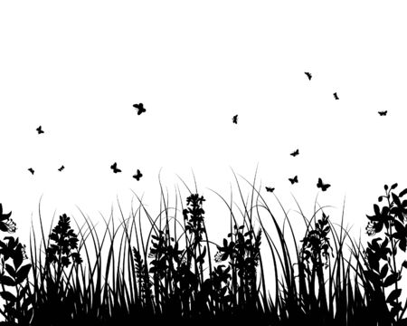 Vector grass silhouettes background for design use Stock Vector - 5250409
