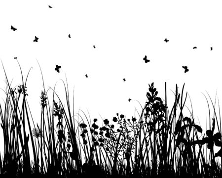 Vector grass silhouettes background for design use Stock Vector - 5250404