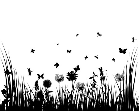 Vector grass silhouettes background for design use Stock Vector - 5250405