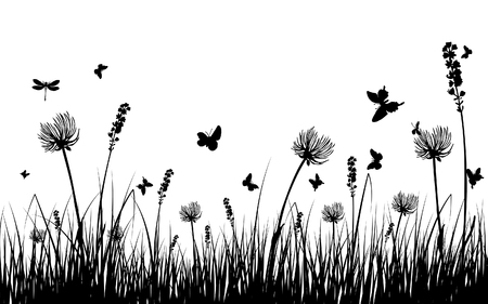 grass illustration: Vector grass silhouettes background for design use. 16:10