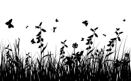 fertility: Vector grass silhouettes background for design use. 16:10