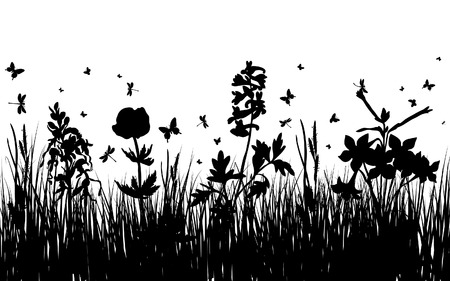 Vector grass silhouettes background for design use. 16:10 Stock Vector - 5299581