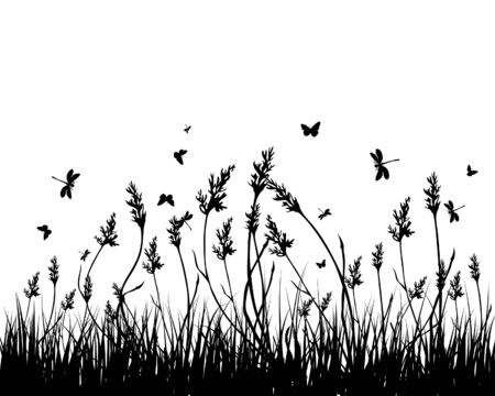 Vector grass silhouettes background. All objects are separated. Stock Vector - 5355494