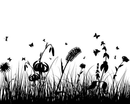 Vector grass silhouettes background. All objects are separated. Stock Vector - 5357997
