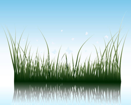 Vector grass silhouettes background with reflection in water. All objects are separated. Stock Vector - 5495399