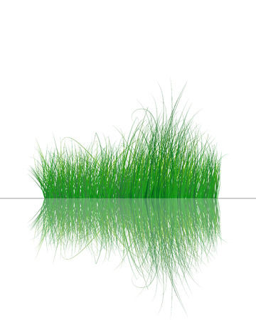 Vector grass silhouettes background with reflection in water. All objects are separated. Stock Vector - 5560051