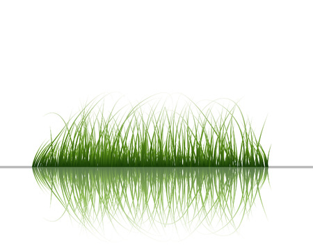 landscaped: Vector grass silhouettes background with reflection in water. All objects are separated.