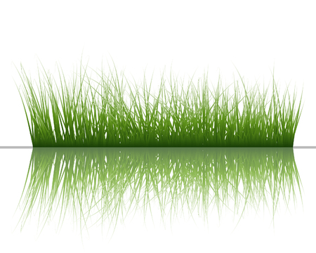 Vector grass silhouettes background with reflection in water. All objects are separated. Stock Vector - 5560050