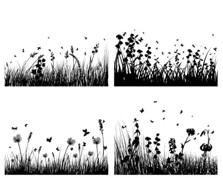 Vector grass silhouettes background. All objects are separated. Stock Vector - 5603154