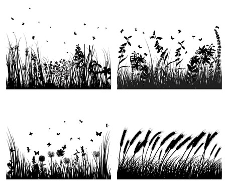 Vector grass silhouettes background. All objects are separated. Stock Vector - 5603169
