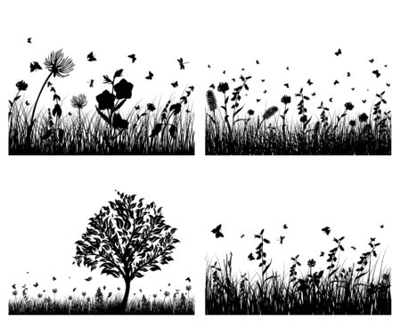 Vector grass silhouettes background. All objects are separated. Stock Vector - 5603167