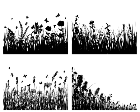 Vector grass silhouettes background. All objects are separated. Stock Vector - 5603168