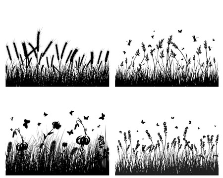 Vector grass silhouettes background. All objects are separated. Stock Vector - 5603176