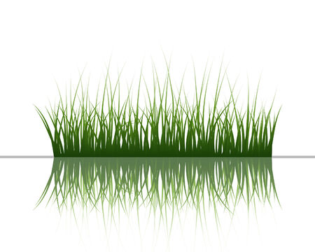 Vector grass silhouettes background with reflection in water. All objects are separated. Stock Vector - 5603182
