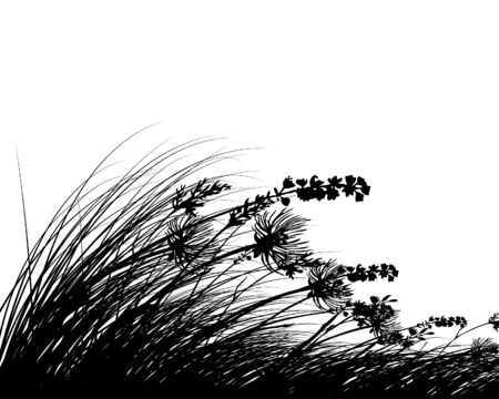 Vector siluetas hierba de fondo. Todos los objetos están separados.