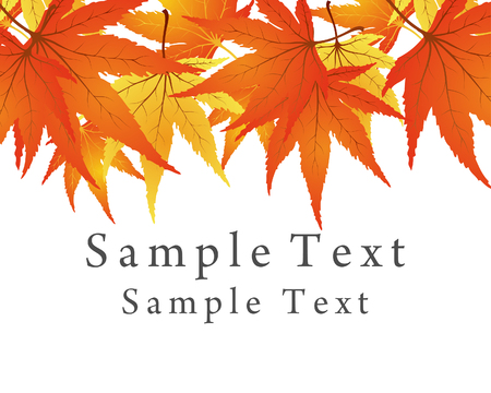 Backgroundframe from  maple  leaves. Vector illustration. Vector