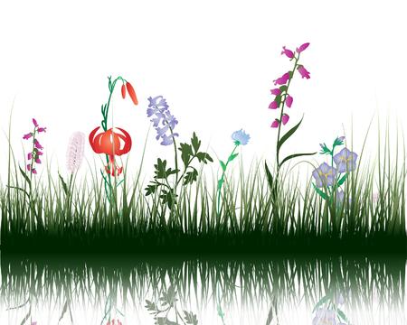 Vecteur d'herbe silhouettes d'arri?re-plan avec la r?flexion dans l'eau. Tous les objets sont s?par?s.