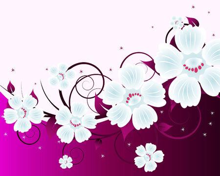 Floral background for design use. Vector illustration. Stock Vector - 5633018