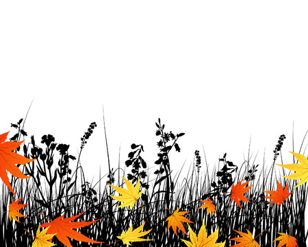field maple: Vector grass silhouettes background. All objects are separated. Illustration