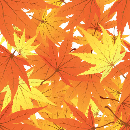 Twisted row of autumn  maples leaves. Vector illustration. Vector