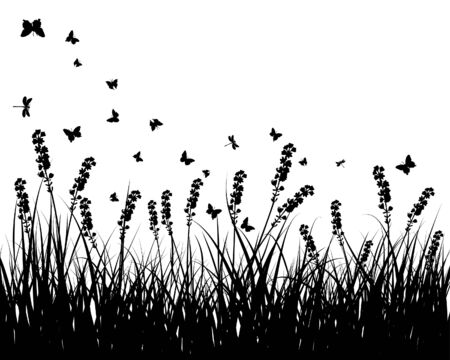 Vector grass silhouettes background. All objects are separated. Stock Vector - 5698447