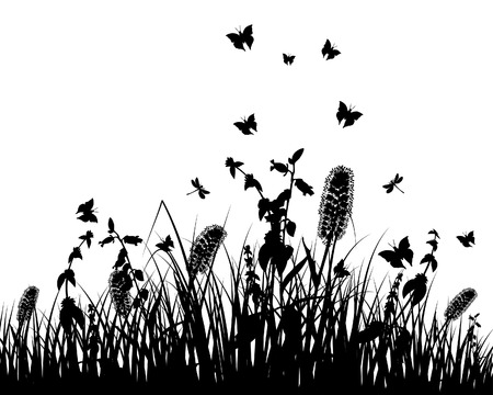 Vector grass silhouettes background. All objects are separated. Stock Vector - 5716854