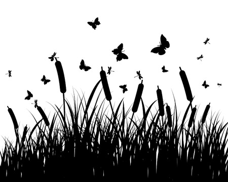 Vector grass silhouettes background. All objects are separated. Stock Vector - 5716765
